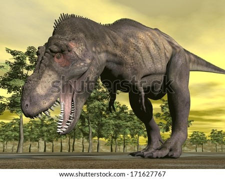 One tyrannosaurus dinosaur walking aggressively mouth open in nature with trees by sunset - stock photo
