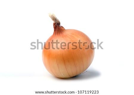 Onion bulb isolated on white background - stock photo