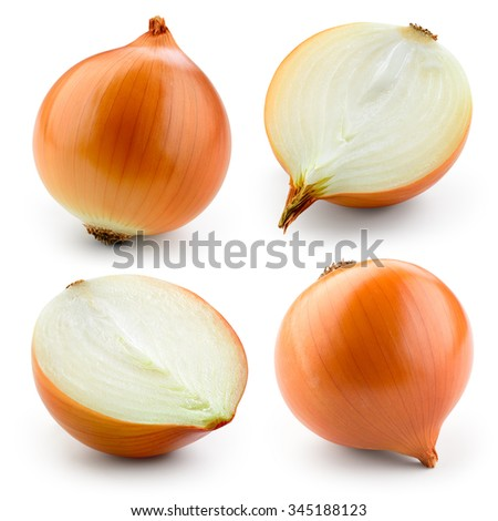 Onion bulb isolated on white. With clipping path. Collection. - stock photo