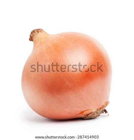Onion isolated on white background - stock photo