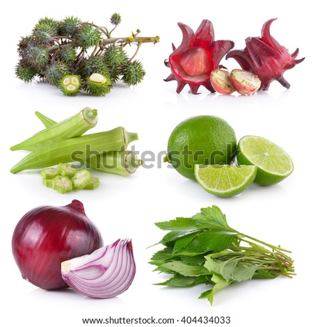onion, White mugwort, lime, okra, roselle, Castor oil plant on white background  - stock photo