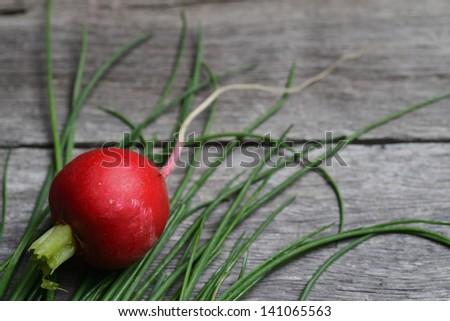 onions radish vegetables - stock photo