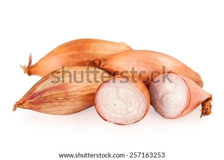 onions shallots isolated on white - stock photo