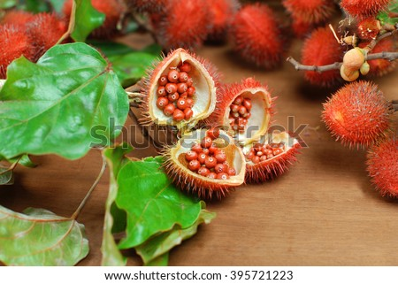 Open annatto - stock photo