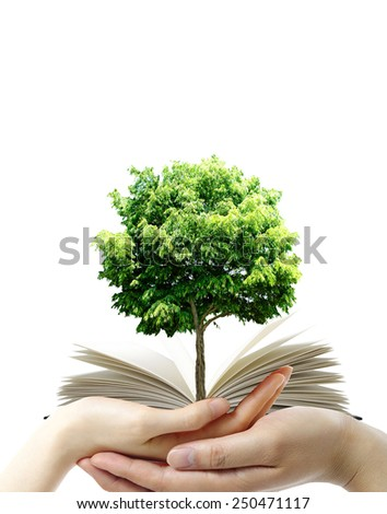 Open Book in the hands over the white background - stock photo