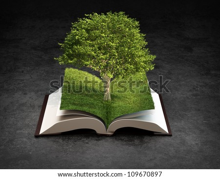 Open book - knowledge and creativity concept - stock photo