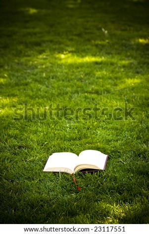 Open book on green background - stock photo