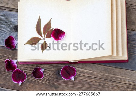 open book with herbarium leaves and petals of geraniums on the page. Still on the old wooden textured boards - stock photo