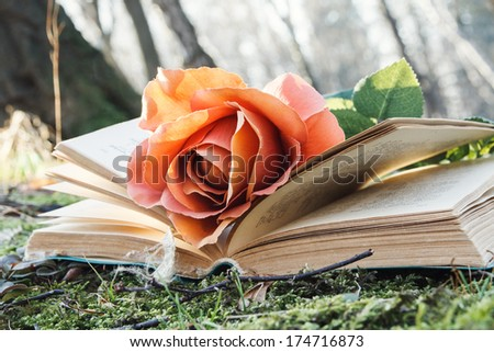 open book with rose on the moss in the forest - stock photo