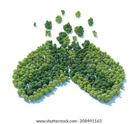 Open capsule shaped forest viewed from above.  - stock photo