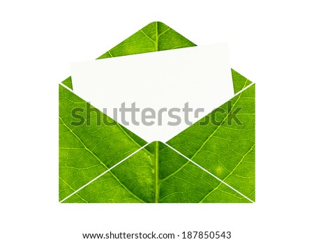 Open envelope with blank paper made of green leaf isolated on white background - stock photo