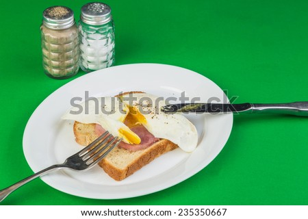 Open Face Sandwich - Fried Egg and cured ham on twelve grain toast with green background. - stock photo