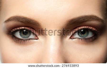 Open female blue eye with makeup with brown eyebrows and black lashes - stock photo