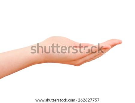 Open hand isolated - stock photo