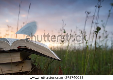 Open hardback book, diary, fanned pages on blurred nature backdrop. Books stacking. Back to school. Copy Space. Education background. - stock photo