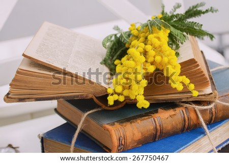 open  vintage old book  with french mimosa flowers - stock photo
