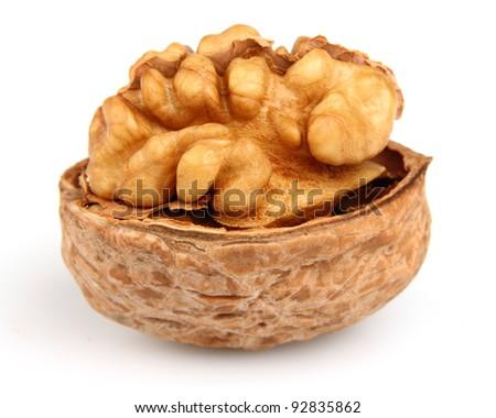 Open walnut in closeup - stock photo