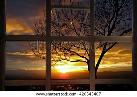 Open window with sun beams thorough branches of tree - stock photo