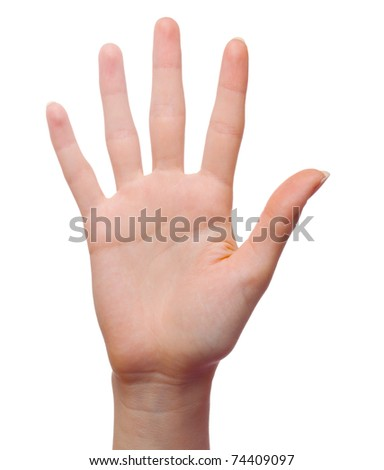Open woman hand or number five isolated - stock photo