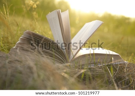 opened book with landscape - lying on yellow grass on sunset - stock photo