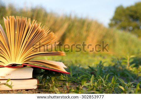 Opened hardback book diary, fanned pages on blurred nature landscape backdrop, lying in summer field on green grass. Books stacking. Copy space, back to school education background. - stock photo