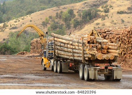Operations in the log yard at a conifer log mill near Roseburg Oregon - stock photo