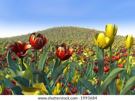 Optimism, exuberance, joy and abundance expressed through a vast field of spring flowers - stock photo