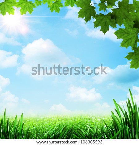 Optimistic meadow. Abstract natural backgrounds - stock photo