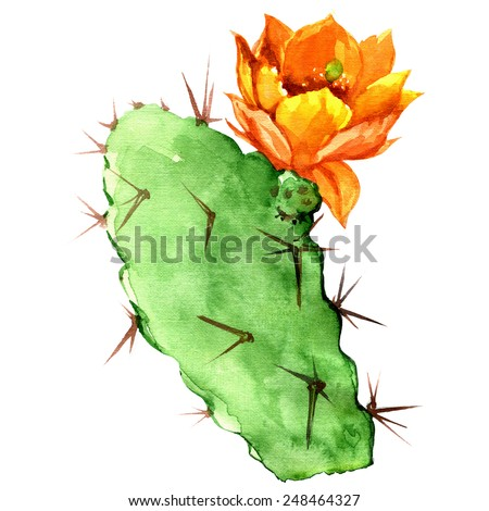Opuntia cactus with yellow flower, watercolor painting - stock photo