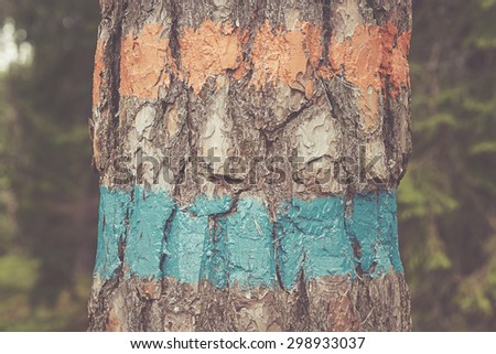 Orange and blue trail marker on the tree. Filter applied - stock photo