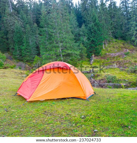 Orange camping tent in a green forest.  - stock photo
