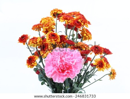 Orange chrysanthemum and pink carnation ion white background - stock photo
