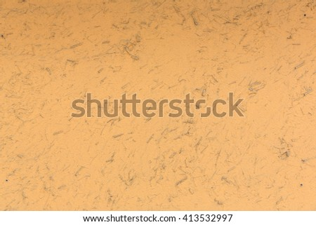 orange concrete, mix with dried wooden stick for texture - stock photo