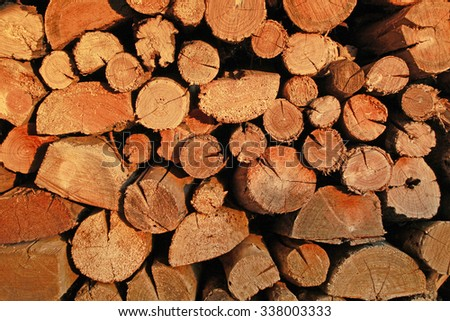Orange firewood stacked in a woodpile illuminates the evening sun. Autumn firewood, farmers are preparing for winter. - stock photo