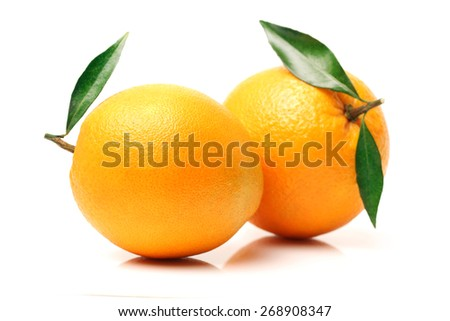 Orange fruit on the white background  - stock photo