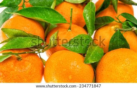 Orange mandarine with green leaves. Closeup of tangerine. Selective focus  - stock photo