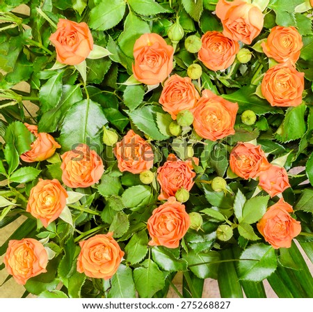 Orange roses flowers, close up, floral arrangement, bouquet. - stock photo