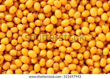 Orange sea buckthorn berries background - stock photo