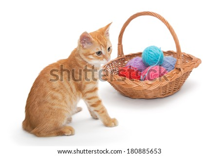 Orange tabby kitten  plays ball of wool - stock photo