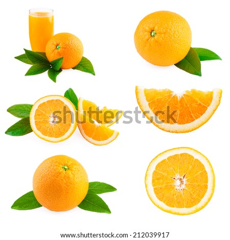 Oranges fruits collection - stock photo