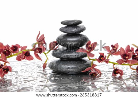 Orchid and wet black stacked stones on wet background  - stock photo