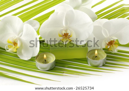 Orchid, candle, soap in a sp - stock photo