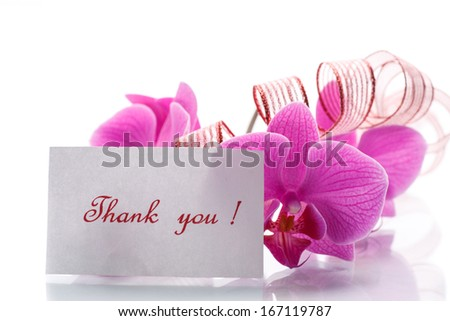 orchid flowers with gratitude on a white background - stock photo