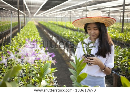 orchid girl, Young Asian girl wearing weave hat in orchid farm - stock photo