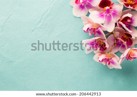 Orchids bloom. White with pink color. Spa card. - stock photo