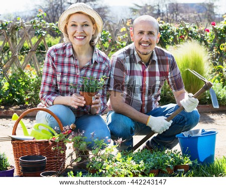 Ordinary cheerful charming senior couple looking after flowers in the garden - stock photo