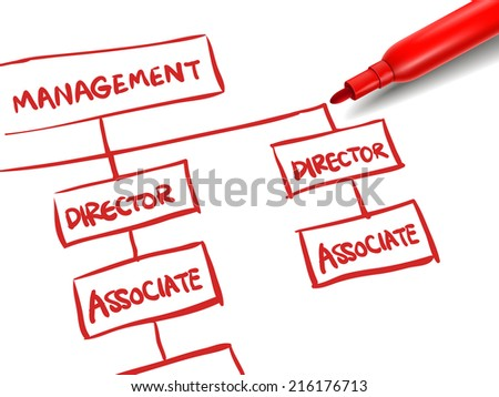 org chart with a red marker over white - stock photo