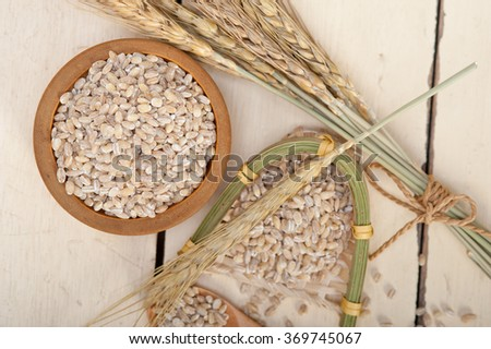 organic barley grains over rustic wood table macro closeup - stock photo