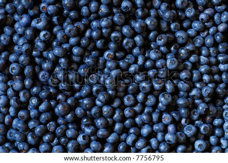 Organic blueberry background - stock photo