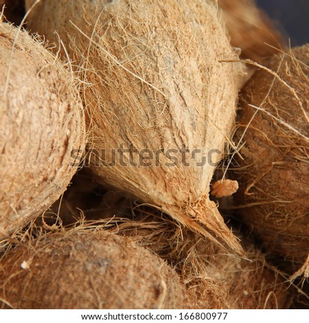 organic coconuts at local market. Shallow depth of field - stock photo
